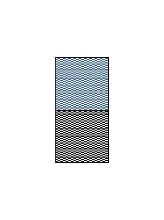 Scale Motorsport - Horizontal Checkerboard